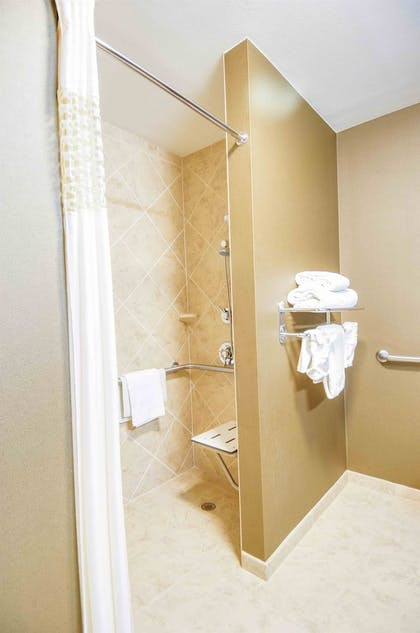 Bathroom Shower | Hampton Inn & Suites Pinedale
