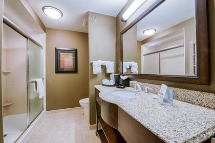 Bathroom | Hampton Inn & Suites Pinedale