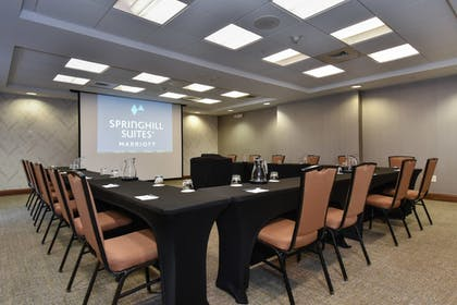 Meeting Facility | SpringHill Suites by Marriott Columbia Downtown/The Vista