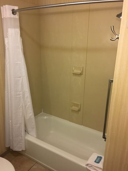 Bathroom | Holiday Inn Express Johnson City
