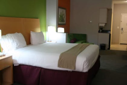 Guestroom | Holiday Inn Express Hotel & Suites Clute - Lake Jackson
