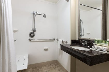 Bathroom | Holiday Inn Express Hotel & Suites Clute - Lake Jackson