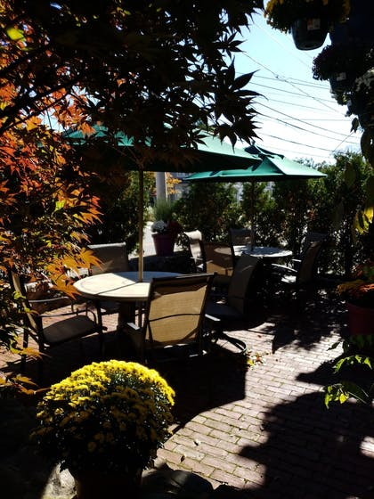 Property Grounds | Crescent Suites Hotel