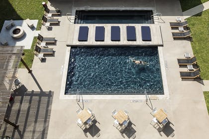 Outdoor Pool | NYLO Las Colinas Hotel, Tapestry Collection by Hilton