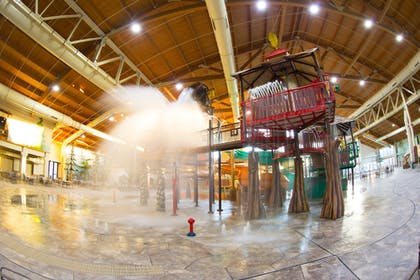 Featured Image   Great Wolf Lodge Concord