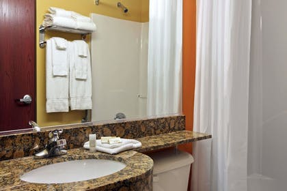 Bathroom | Microtel Inn & Suites by Wyndham Anderson/Clemson