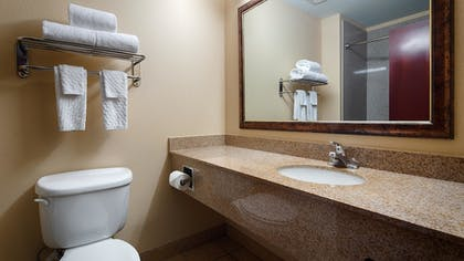 Bathroom | Best Western Plus Katy Inn & Suites