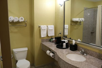 Bathroom | Ambassador Inn and Suites Tuscaloosa