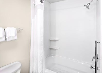 In-Room Amenity | Holiday Inn Express Lake Wales N-Winter Haven