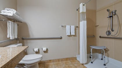 Bathroom | Best Western Plus Eastgate Inn & Suites