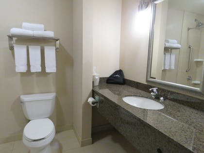 Bathroom | Holiday Inn Express Hotel & Suites NORTH SEQUIM