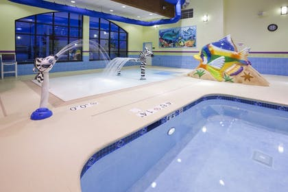 Pool | Holiday Inn Express Hotel & Suites Rogers
