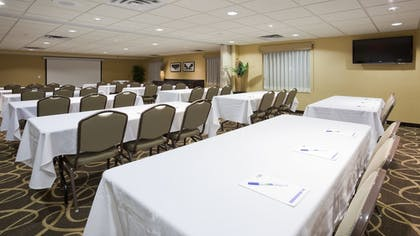 Meeting Facility | Holiday Inn Express Hotel & Suites Rogers