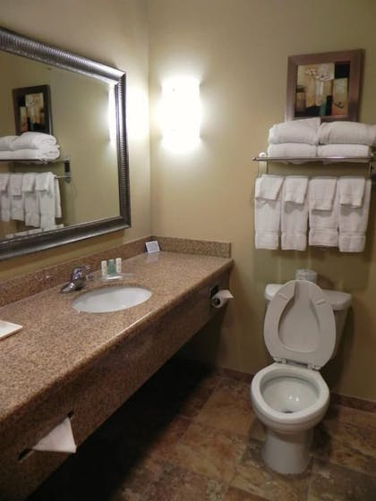 Bathroom | Comfort Suites Gulfport