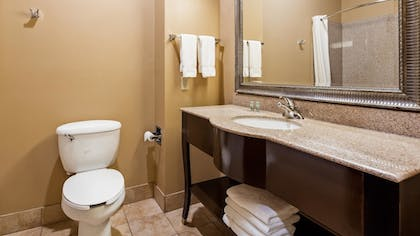 Bathroom | Best Western Lamesa Inn & Suites