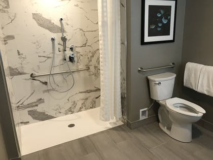 Bathroom Shower | Embassy Suites by Hilton Plainfield Indianapolis Airport