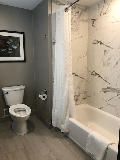 Bathroom | Embassy Suites by Hilton Plainfield Indianapolis Airport