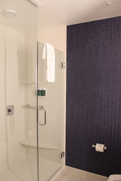 Bathroom Shower | Fairfield Inn & Suites Fort Collins South