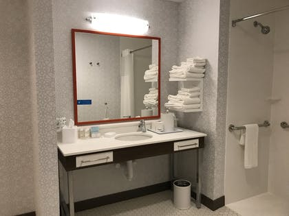 Bathroom | Hampton Inn & Suites Columbia Killian Road