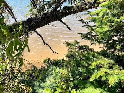 Beach | Seagate: Starboard~coos Bay~premiere Property