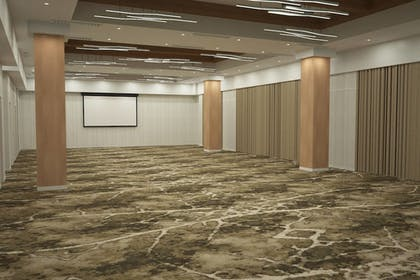 Meeting Facility | SpringHill Suites by Marriott Greenville Downtown