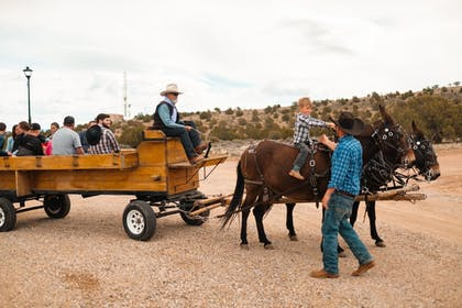 Horse Riding | Luxury Lodge & Spa, Cabins, Camping, Glamping, and RV w/full hook ups-