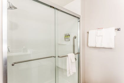 Bathroom Shower | Holiday Inn Express & Suites Springfield North