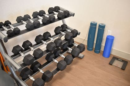 Gym | Holiday Inn Express And Suites Boston South - Randolph