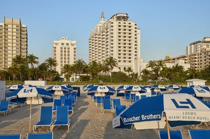 Beach | Loews Miami South Beach