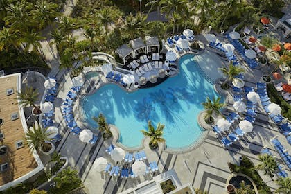 Outdoor Pool | Loews Miami South Beach