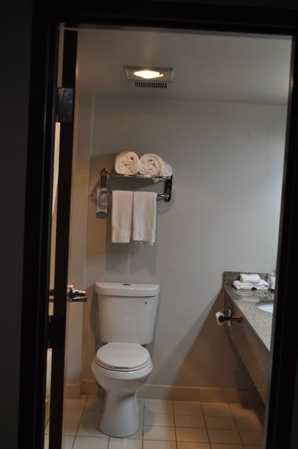 Bathroom | Seaport Inn and Suites