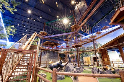 Ropes Course (Team Building) | Great Wolf Lodge Arizona
