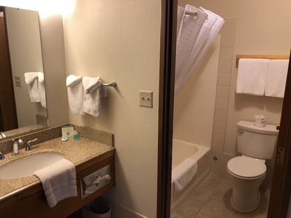 Bathroom | Yellowstone Village Inn and Suites