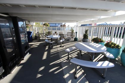 BBQ/Picnic Area | Edgewater Beach inn and suites