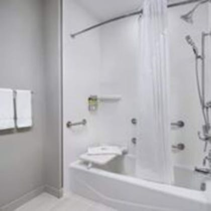 Bathroom | Holiday Inn Express & Suites Odessa I-20