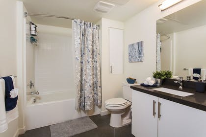 Bathroom | Downtown LA Luxury Two Bedroom Apartment