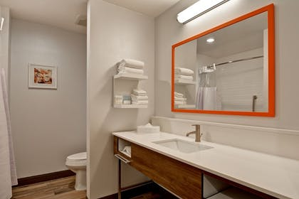 Bathroom | Hampton Inn & Suites Tucson Tech Park