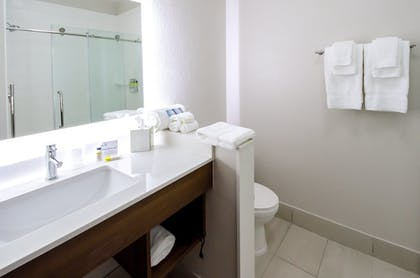 Bathroom | Holiday Inn Express & Suites Taylor