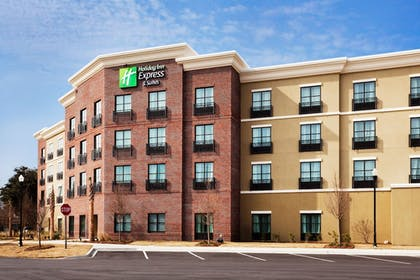 Exterior | Holiday Inn Express & Suites Mt. Pleasant