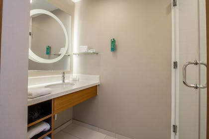 Bathroom | SpringHill Suites by Marriott San Angelo