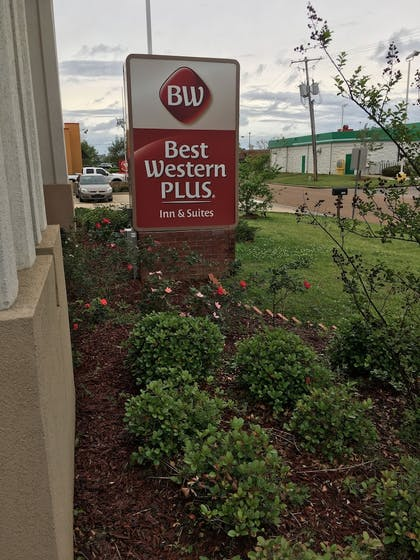 Exterior | Best Western Plus Flowood Inn & Suites