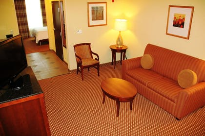 | 1 King Bed 1 Bedroom Suite With Sofabed | Hilton Garden Inn Houston West Katy