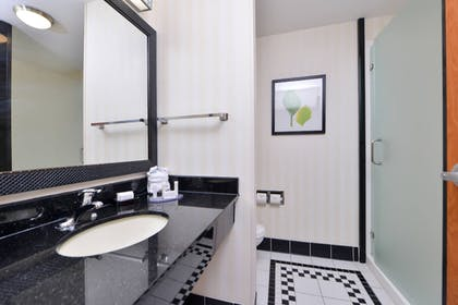 Bathroom | Fairfield Inn & Suites by Marriott Pelham