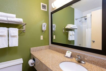Bathroom | Best Western Dutch Valley Inn