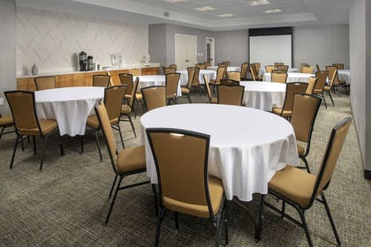 Meeting Facility   SpringHill Suites Alexandria