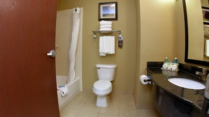 Bathroom | Holiday Inn Express Hotel & Suites Baton Rouge North