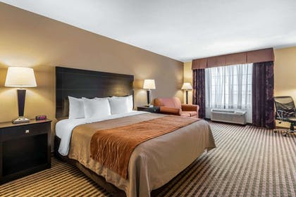 Room | Comfort Inn And Suites
