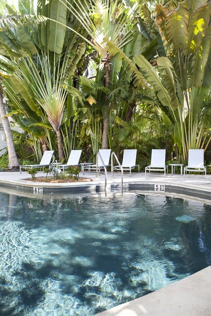 Pool | Paradise Inn Key West-Adults Only
