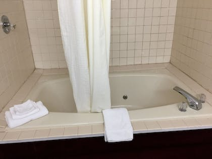Jetted Tub | Laketree Inn And Suites Marion
