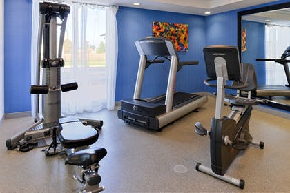 Fitness Facility | Holiday Inn Express Hotel & Suites Terre Haute